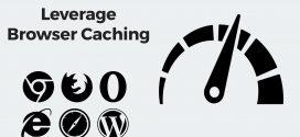 چگونه مشکل Leverage Browser Caching را در وردپرس برطرف کنیم؟